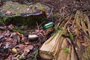 Tronc coupé, bois pourrissant et canette de bière : une scène habituelle !