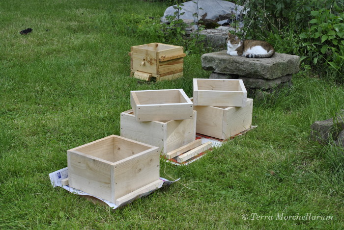 Construire ses ruches - Fabriquer un garde manger ...