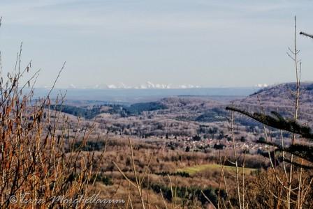 Vues des Alpes depuis les Vosges saônoises.