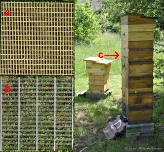 Principe de la grille à reine : 'a' grille plastique recoupée au format de la ruche Warré, 'b' grille métal, 'c' positionnement entre le nid et les hausses à miel.