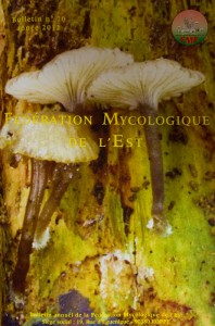 Bulletin n°10 de la FME, observation et étude de champignons souvent rares.
