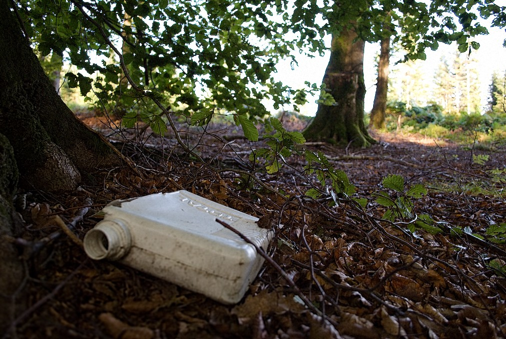 Coupes de bois et pollution