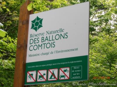 La réserve naturelle des Ballons Comtois.