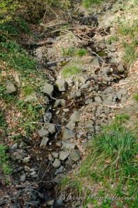 Les sources et les ruisseau sont presque à sec.