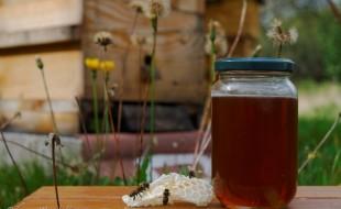 Un pot de miel produit par mes abeilles.