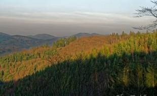 Vue des Vosges Saônoises avec les sommets discrètement mais encore bien enneigés.