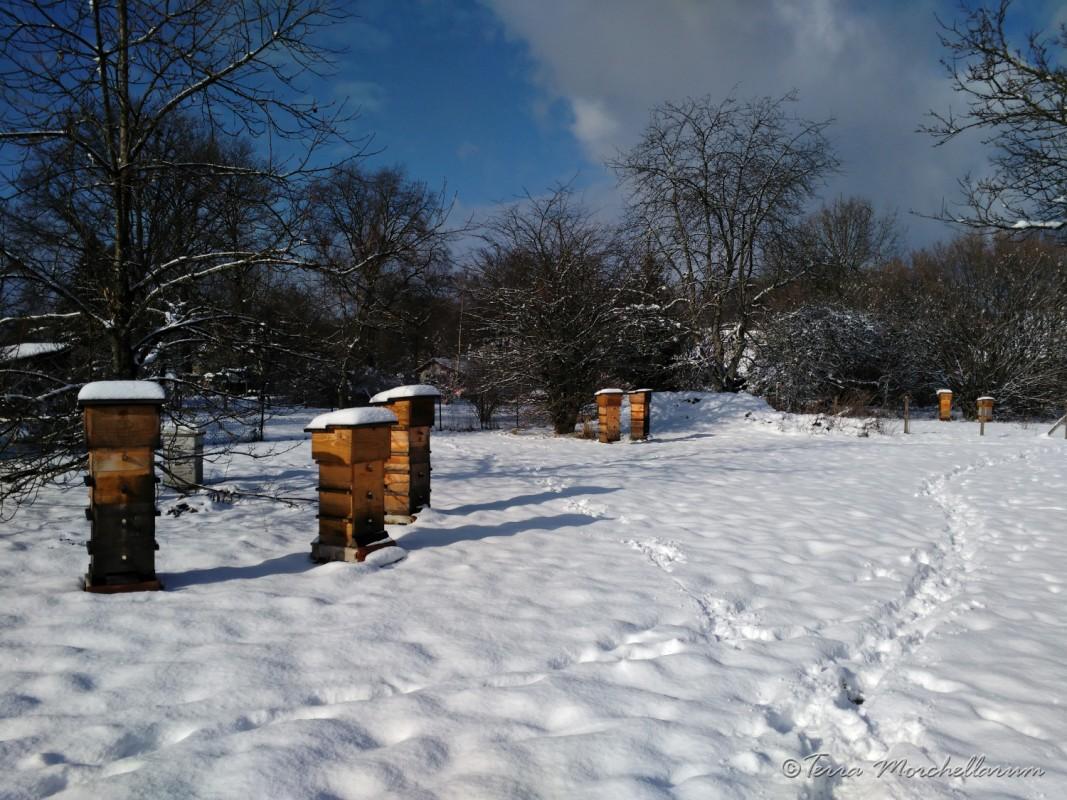 Le petit rucher de Ronchamp sous la neige